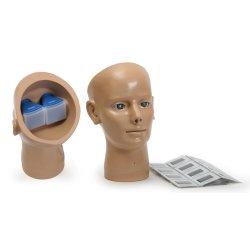 SB38895 Тренажер для обследования сетчатки глаза